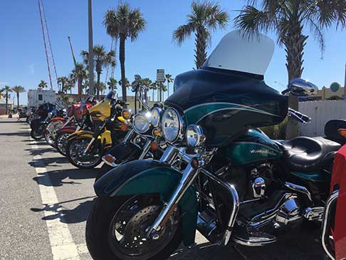 Motorcycles of every kind parked and lined up with palm trees in the background